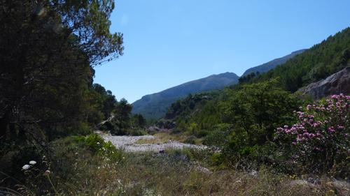 Jalon Valley - Alicante, Spain