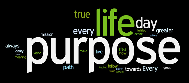 Find your purpose - image